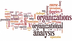 Organizational Analysis (Self-Paced)